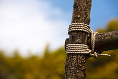 Wood tied for fence Royalty Free Stock Image