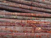 Wood timber pile, wooden lumber log background Stock Photos