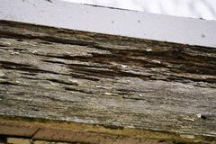 Wood timber with termite damage. Wooden plank siding of a house under the roof is damaged and compromised structurally with gaps and holes left behind by organic stock images