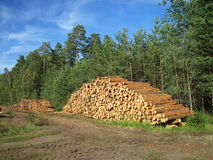 Wood timbers Royalty Free Stock Images