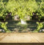 Wood top table and green garden bokeh background. For display natural or eco product stock images