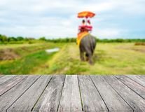 Wood top view on blurred Tourists on elephant ride tourism background. tourism concepts stock images