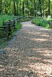 Wood Trail Stock Image