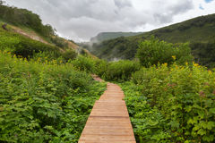Wood trail in Valley of Geysers. Royalty Free Stock Photos