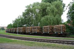 Wood transport wagon. Man checking wagons holding a load of wood Stock Photos