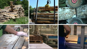 Wood transportation. Floor parquet production. Clips collage stock video