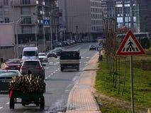 Prishtina, Kosovo. A wood transporter in the city center Stock Image