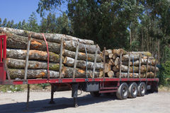 Wood Transporters. The loaded truck with logs Royalty Free Stock Photo