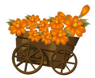A wood  trolley  and flower. A group of orange flower in a wood  trolley Stock Images