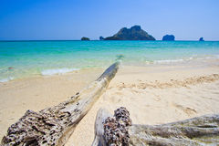 Wood on the tropical beach in Thailand Stock Images