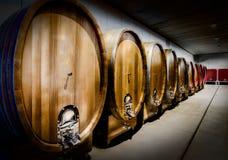 Wood trummor för vin i en vinodling av langheregionen i nordliga Italien Fotografering för Bildbyråer