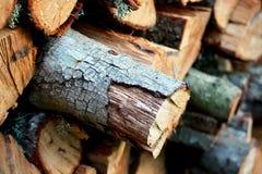 Wood, Trunk, Lumber stock photography