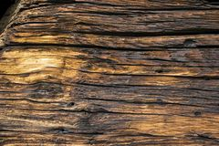 Wood, Trunk, Rock, Bedrock royalty free stock photo