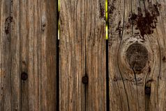 Wood, Trunk, Tree, Wood Stain Stock Image