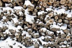 Wood trunks Royalty Free Stock Photos