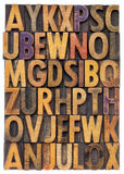 Wood type alphabet. Random letters of alphabet - vintage letterpress wood type printing blocks scratched and stained by color inks Stock Photos