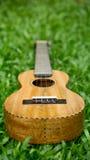 Wood ukulele för mango på gräs Arkivbilder