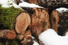 Wood under the snow Stock Photos