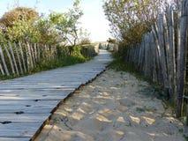 Wood väg i riktningen av havet royaltyfri bild