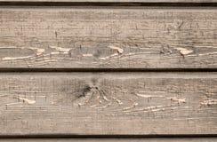 Wood väggbakgrund Royaltyfri Bild