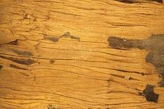Wood väggtextur och bakgrund Royaltyfria Foton