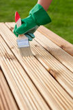 Wood varnishing Royalty Free Stock Image