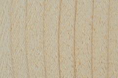 Wood vein Stock Photography