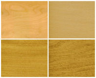 Wood, veneer: ice birch, beech, elm, oak. Wood, veneer of trees, from left to right and from top to down: ice birch, beech, elm, oak royalty free stock image