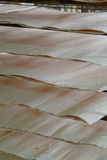 Wood veneer for plywood production Royalty Free Stock Photo
