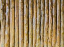 Wood vertikal bakgrund för teakträ Royaltyfri Fotografi