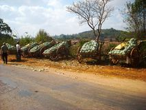 Wood wagons with water melons. In burma Royalty Free Stock Photos