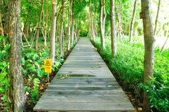 Wood Walk Way Stock Photo