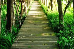 Wood Walk Way Royalty Free Stock Photo