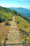 Wood Walk Way,Kew Mae Pan,Doi Inthanon National, Chiang Mai, Thailand Royalty Free Stock Photography