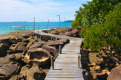 Wood walk way to sea . Island Koh Kood, Thailand . Royalty Free Stock Photos