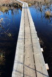 Wood walkway built over marsh water Royalty Free Stock Photo