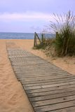 Wood walkway to the ocean. Wood walkway on the beach sand that leads to the ocean through some vegetation on the side. The way is composed of multiple aligned Royalty Free Stock Photos