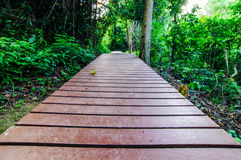 Wood walkway on a wild park to the Waterfall Huay Mae Kamin, Royalty Free Stock Photos
