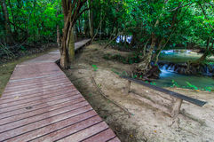 Wood walkway on a wild park to the Waterfall Huay Mae Kamin Royalty Free Stock Image