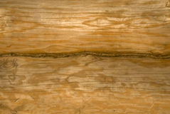 Wood wall. New wood wall from beam royalty free stock photography