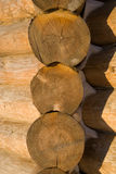 Wood wall. New wood wall from beam royalty free stock photos