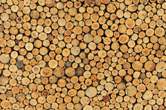 Wood Wall Royalty Free Stock Photography