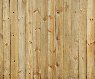 Wood wall background. With clear wood texture Stock Images