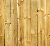 Wood wall. Background for design Royalty Free Stock Photography