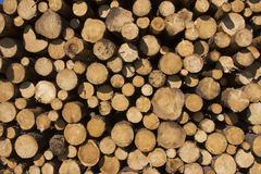 Wood wall full frame background stock photography