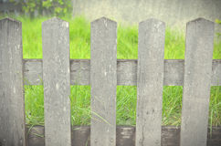 Wood wall and green grass background Royalty Free Stock Photo