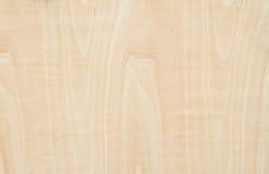 Wood wall Royalty Free Stock Image