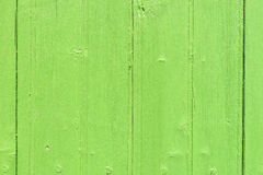 Wood wall light green colored Stock Photography