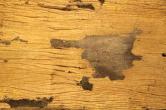 Wood wall texture and background Royalty Free Stock Photo