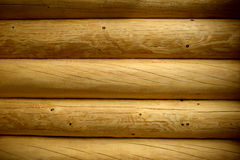 Wood wall texture background. Tree Royalty Free Stock Image